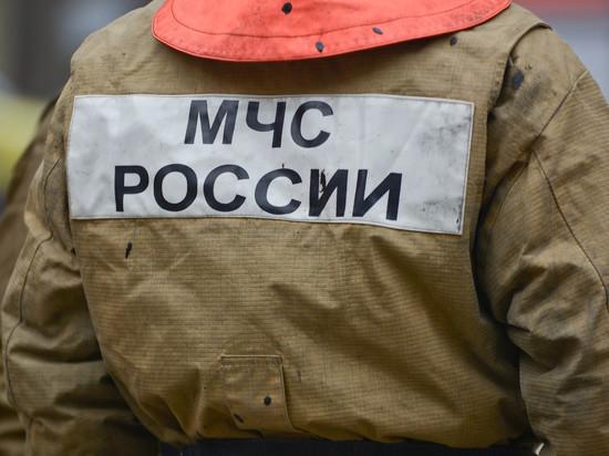МЧС предупреждает о начале пожароопасного сезона в середине апреля