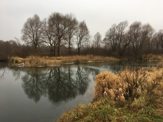 В Татарстане за загрязнение озера завели уголовное дело