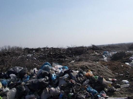 Стихийная гигантская свалка угрожает здоровью жителям Воронежской области