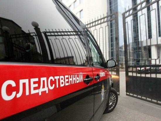 В Сорочинске женщина ответит перед судом за гибель 2-летней дочери на морозе