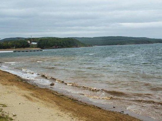 Пляжи Русского острова хотят отдать жителям Владивостока