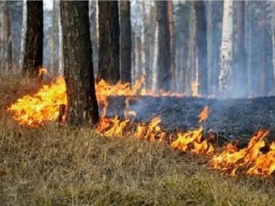 Особый противопожарный режим вводят вИркутской области с15апреля
