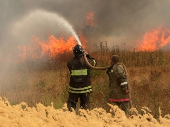 Под Тверью сельские жители борются с масштабным пожаром