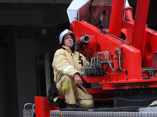 В Татарстане объявлен лесопожарный сезон