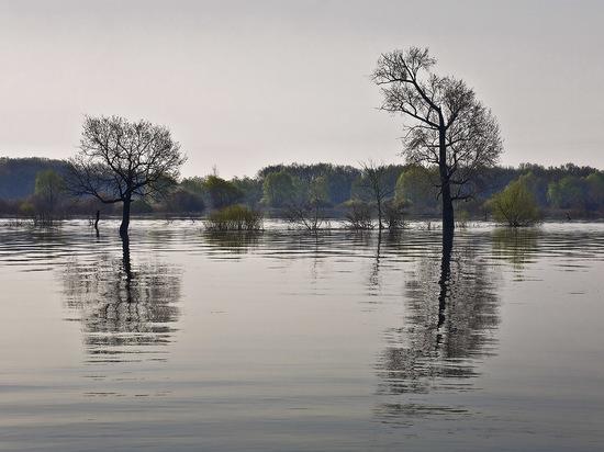 В Новоорском районе на реке перевернулась лодка с людьми