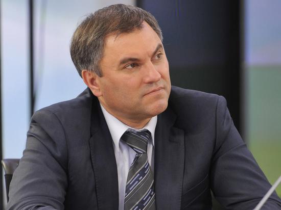 Володин обвинил Минздрав в неэффективной работе по импортозамещению лекарств