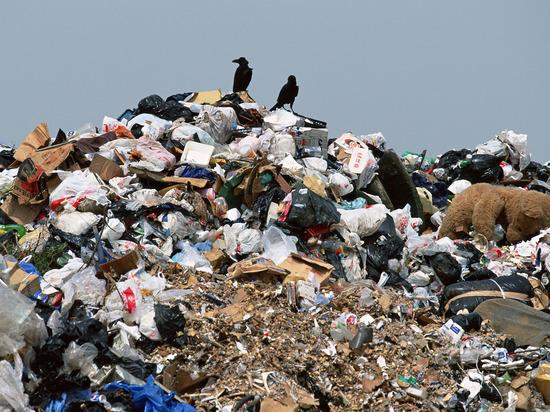 Закон, защищающий Россию от мусорной катастрофы, «застрял» в Госдуме