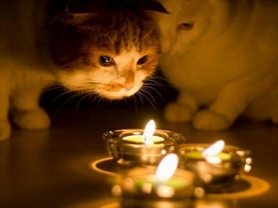 Во всех районах Твери с понедельника будут отключать электричество