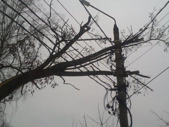 13 районов Тверской области после урагана остаются без электричества
