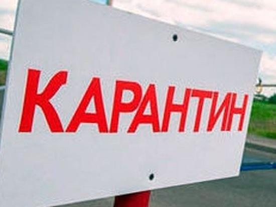 В Татарстане объявлен карантин по бешенству