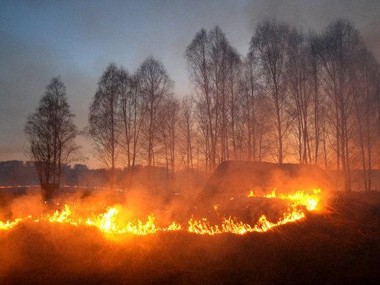 Космический мониторинг выявил в Тверской области три термические точки