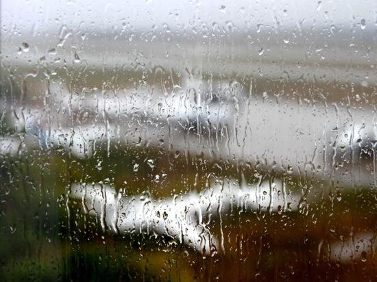 Небольшой дождь ожидается в Мордовии 25 апреля
