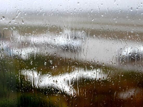 Дождь, сильный ветер и гроза ожидаются 28 апреля в Мордовии