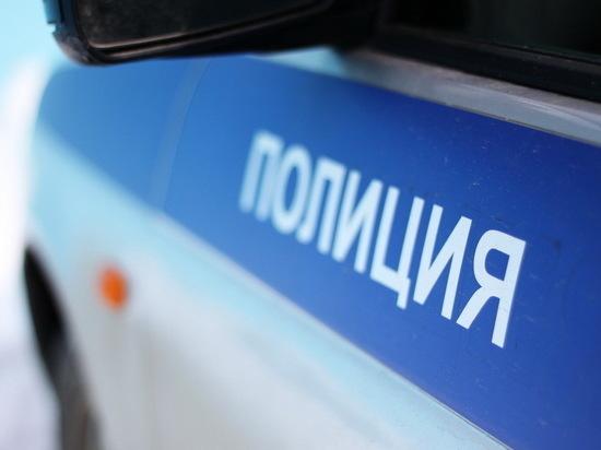 ВТверской области полицейские отыскали пропавшую 13-летнюю девочку