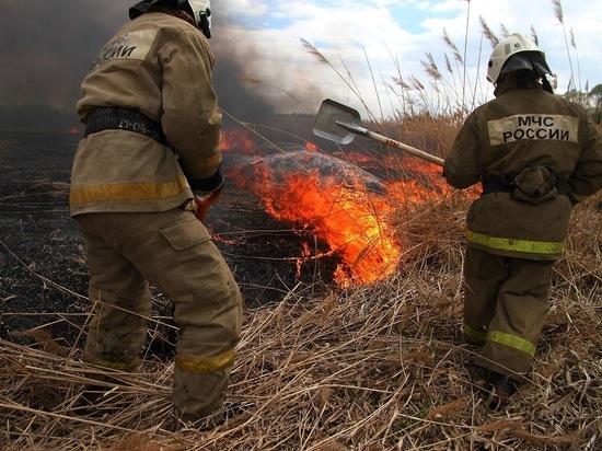 Песошин подписал распоряжение овведении противопожарного режима вТатарстане с30апреля