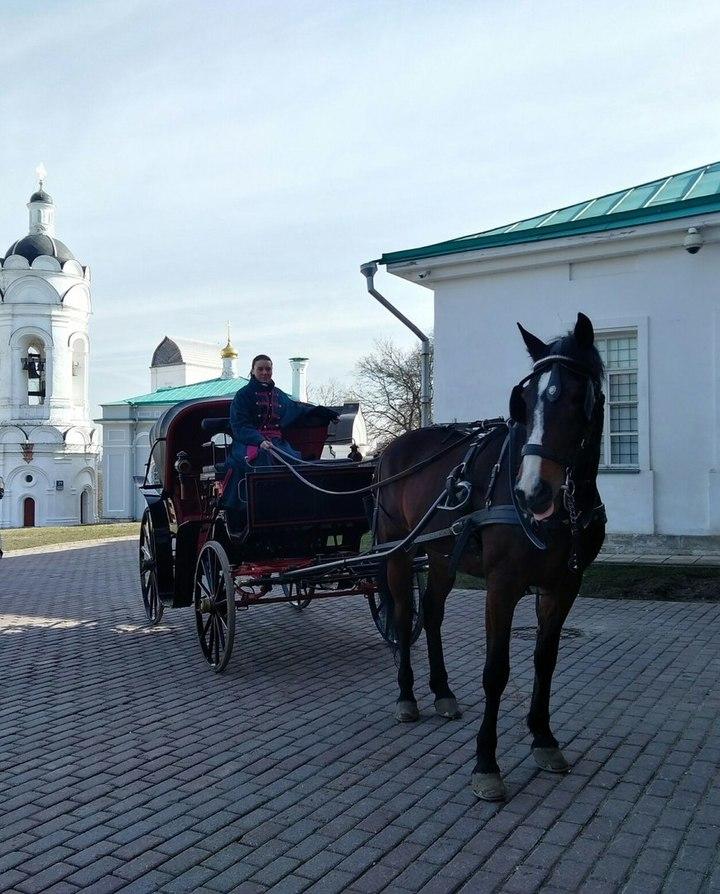 Первые данные о пострадавших китайцах при аварии конной повозки в Москве