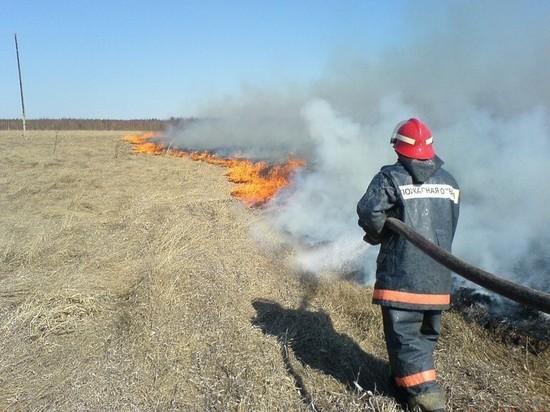 Более 20 костромичей оштрафовали за несанкционированный пал травы, мусора и разведение костров