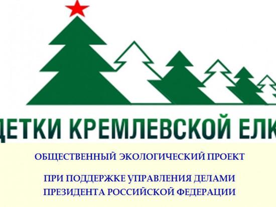 """""""Детки кремлевской елки"""" появятся в Калуге"""