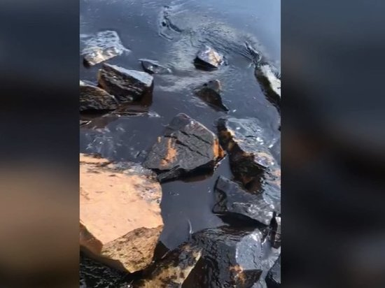 Врайоне бухты Горностай произошел разлив нефтепродуктов