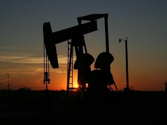 «Транснефть» снизила транзит нефти через государство Украину из-за жалоб европейских покупателей
