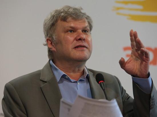 Митрохина переизбрали главой московского отделения партии «Яблоко»