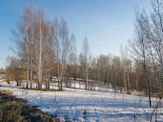 Акция поочищению лесов отмусора стартовала вХанты-Мансийском округе