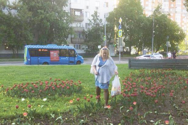 Воровство цветов с клумб в Москве стало повальным