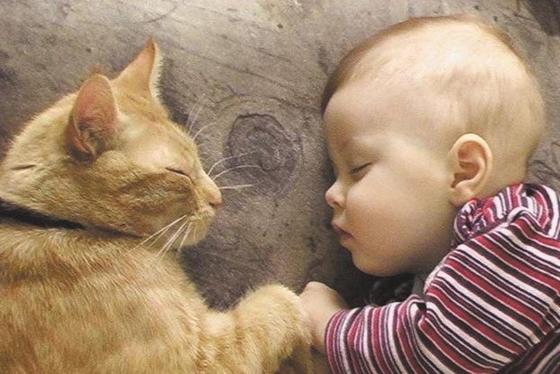 Названы главные способы профилактики аллергии у детей