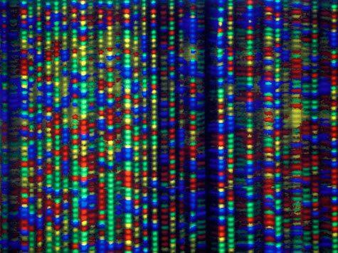Прорыв: создан искуственный аналог ДНК человека