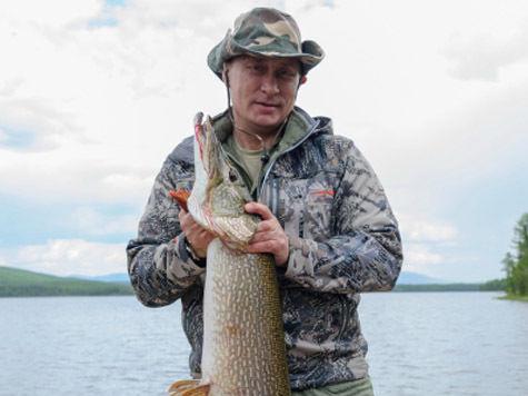 Песков ответил на слухи о рыбалке Путина: Лето, блогерам делать нечего