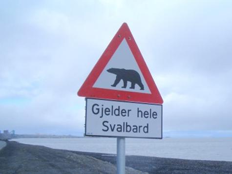 Заброшенная Арктика