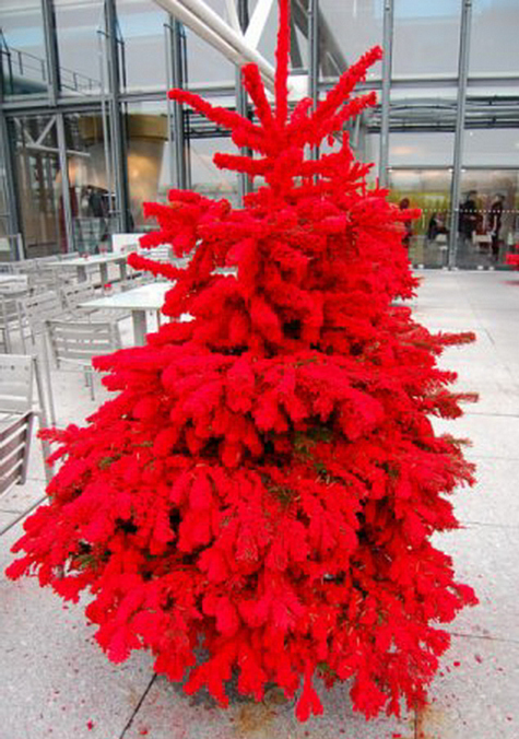 Красная елка гвоздей не боится