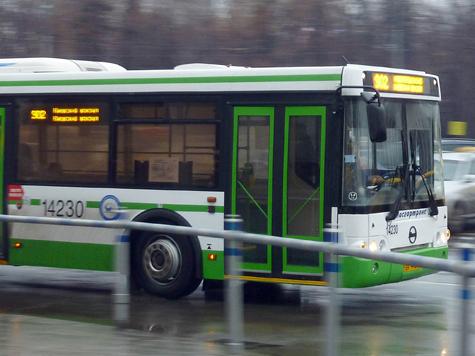Автобусы завоевали расположение горожан