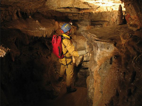 В самой глубокой пещере планеты обнаружено загадочное безглазое насекомое