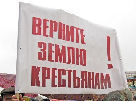 Прохоров, Макаревич и Пугачева поделятся землей с крестьянами