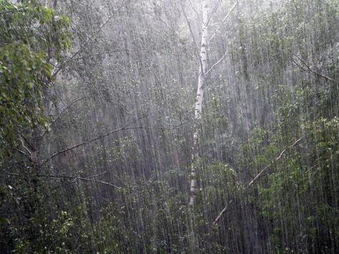 На Москву надвигается сильный ливень с грозой и градом