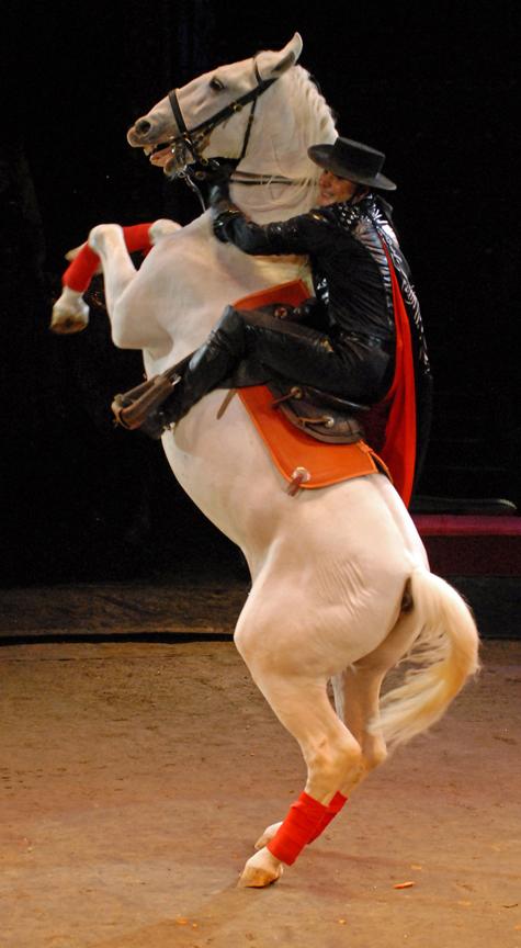 На манеж пришла лошадиная сила