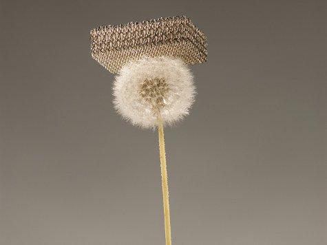 Новый самый легкий в мире материал на 25% легче воздуха