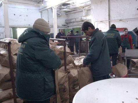 Бирюлевскую овощебазу может заменить агрокомлекс в Щербинке