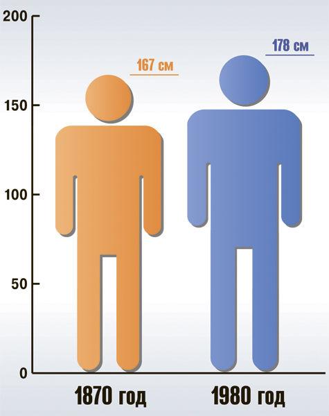 Мужчины в Европе выросли на 11 см