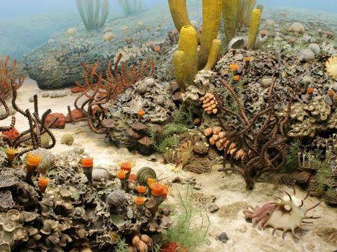 Крупнейшее вымирание в истории связано с формированием суперконтинента Пангея