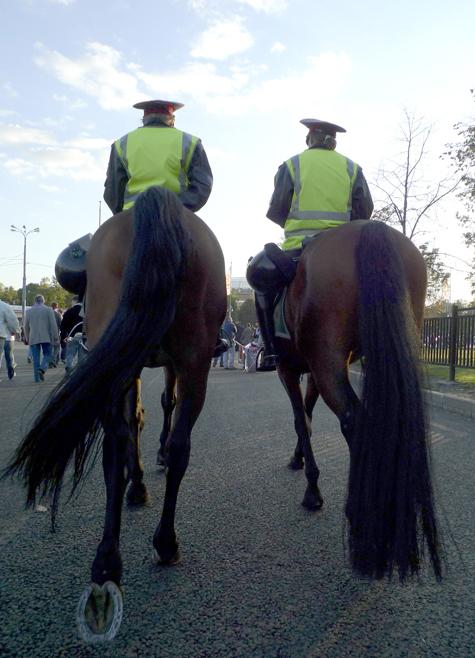 Патрульные не смогут делиться лошадьми с коллегами