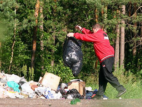 ...убрать мусор, накопившийся за зиму.  Вот и мы так думали.