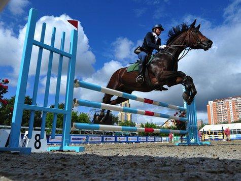 Участники Олимпиады не поделили Кубок Кремля
