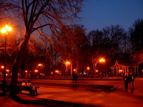 Чиновники прольют свет на Ивановский парк