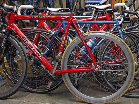 Велодорожка на Рублевке будет не простая, а экологичная