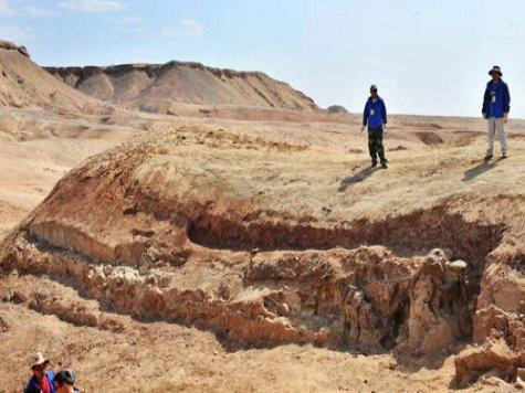 В Китае найдены останки гигантского динозавра