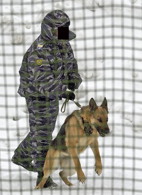 Полицейский-кинолог напал на коллегу, взяв пример со своей собаки