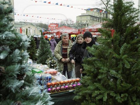 Москвичам предложат елки повышенной пушистости