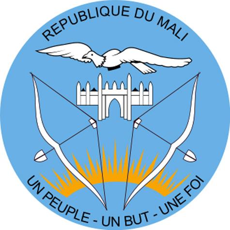 В Мали свергают рязанского десантника